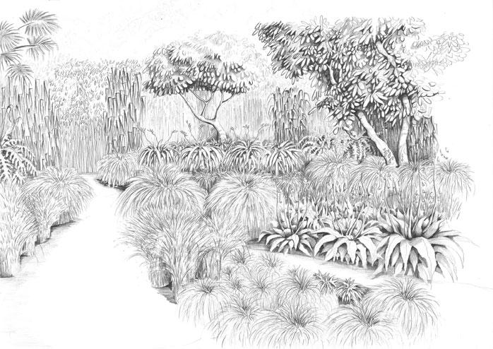 Grass_land